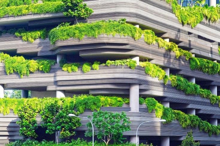 Végétalisation des villes : un concept grandissant