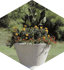 Tulip concrete planter